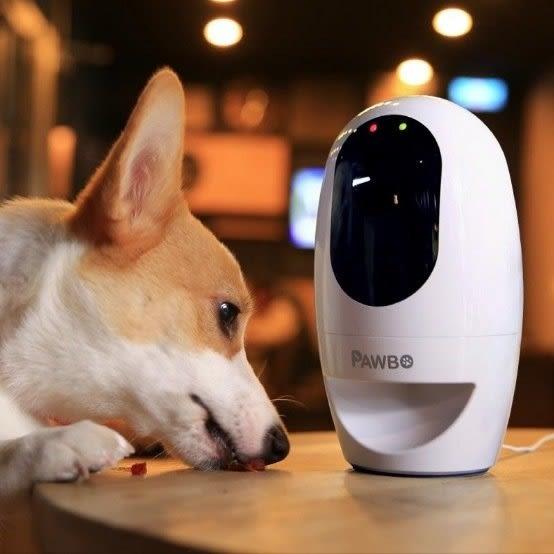 Pawbo - 寵物攝影機 『可遠端對話、給點心、雷射筆互動』