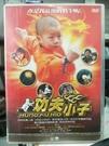 挖寶二手片-K08-026-正版DVD-日片【功夫小子】-矢口真里 上野樹里(直購價)