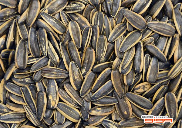 【吉嘉食品】鸚鵡世家 焦糖瓜子(散) 500公克,產地中國 {RR0}[#500]