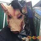 萬聖節動物頭套恐怖抖電鋸驚魂豬八戒面具帶發豬頭面具【淘嘟嘟】