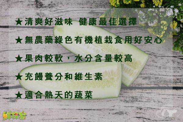鮮採家 台灣特級鮮脆胡瓜 大黃瓜5台斤
