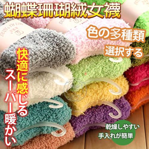 【培菓平價寵物網】韓國》蝴蝶結刺繡半邊絨女襪韓襪中筒半邊絨襪毛巾襪(顏色隨機)