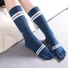 五指襪3雙裝五指襪女士春季高筒二條杠五趾襪棉襪分趾襪運動襪子 快速出貨