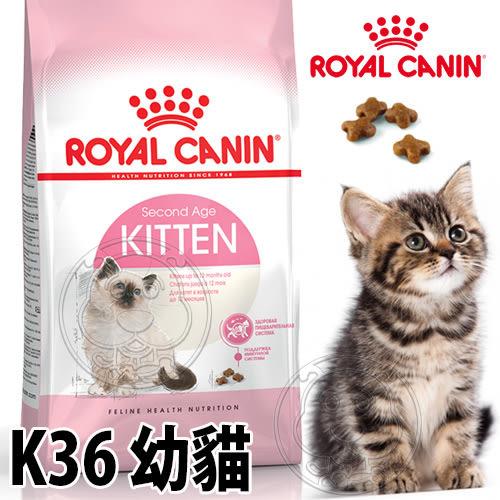 【培菓幸福寵物專營店】法國皇家K36幼貓4kg飼料3.5kg