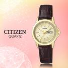 CASIO 手錶專賣店 CITIZEN星...