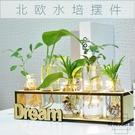 創意綠蘿水培植物玻璃花瓶客廳辦公桌面擺件【時尚大衣櫥】