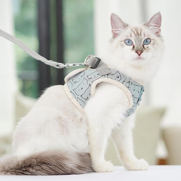 貓咪牽引繩背心式胸背帶遛貓繩子防掙脫透氣可愛貓貓專用寵物用品 露露日記