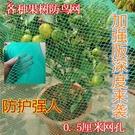 防鳥網 防鳥罩櫻桃網果樹防鳥網果園尼龍網防護罩防雹網葡萄蔬菜草莓網 8號店