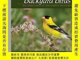 二手書博民逛書店Backyard罕見Birds: Welcomed Guests at Our Gardens and Feede