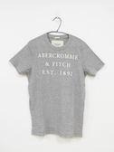 【Abercrombie & Fitch】男款短袖純棉T恤 - 淺灰L/XL