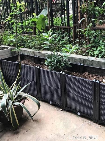 陽台蔬菜種植箱 種菜花盆露台 樓頂特大長方形立體組合花盆種樹箱 樂活生活館