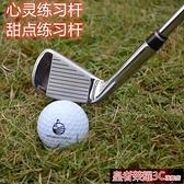 高爾夫球桿 日本原裝 LEEWAY高爾夫練習桿 7號球桿 七號鐵桿 車載防身 鋼桿身YTL