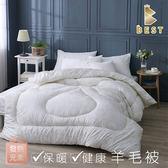 【現貨】台灣製 發熱元素健康羊毛被 雙人6x7尺 3KG 棉被 被胎 Best寢飾
