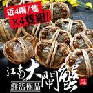 [屏聚美食] 肥美鮮活江南大閘蟹4隻組(...