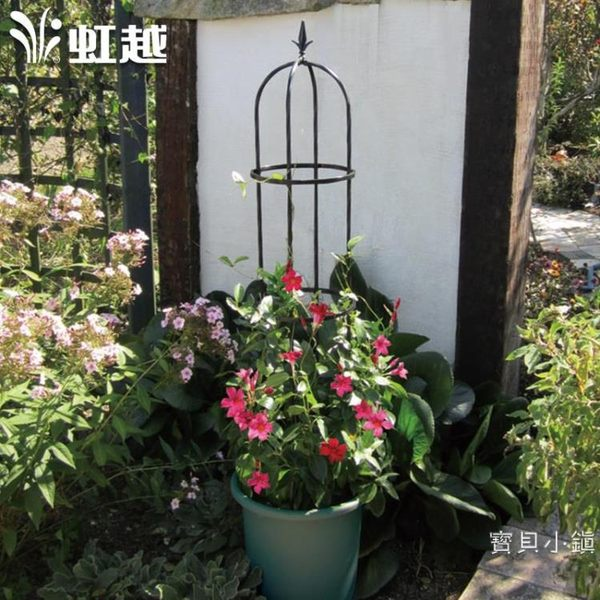 花架小玫瑰花架 庭院月季鐵線蓮爬藤植物支架【快速出貨】