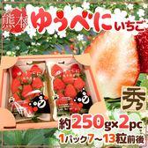 【果之蔬-全省免運】日本熊本/福岡草莓x1箱(2盒/箱 每箱約500克±10%含箱重)