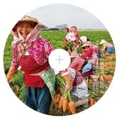 草根台灣臉譜-農情時光-音樂明信片