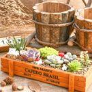 CARMO長方形木製多肉花盆木盒/收納盒...