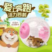 倉鼠跑球 玩具滾球運動球金絲熊跑輪套裝小用品跑步球外帶包過安檢 特惠免運