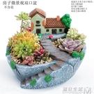 創意個性中大號口徑多口高房子老樁微景觀家用延熹多肉肉植物花盆