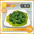 INPHIC-花椰菜模型 花椰菜米 火鍋蔬菜 菜盤 -IMFK029104B