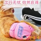 狗狗生理褲大型犬寵物月經期姨媽巾金毛衛生安全內褲【淘嘟嘟】