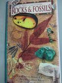 ~書寶 書T3 /歷史_WGI ~Rocks and Fossils_David Root