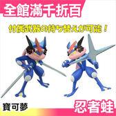 正版 日本 Takara Tomy 小智忍者蛙模型 寶可夢 神奇寶貝 pokemon 甲賀忍蛙【小福部屋】