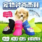 狗狗鞋子 泰迪寵物鞋泰迪鞋一套4只比熊狗狗雨鞋 寵物雨鞋小狗鞋 樂活生活館