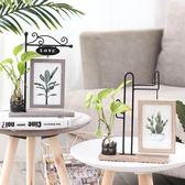 北歐小清新創意6寸相框擺臺個性水培植物花瓶房間臥室裝飾品擺件【端午節免運限時八折】