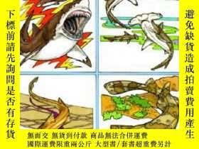 二手書博民逛書店進口原版Sharks罕見of the World Coloring BookY238343 Llyn Hunt