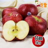 果之家 美國華盛頓榨汁富士蘋果14顆入5kg(單顆約357g)