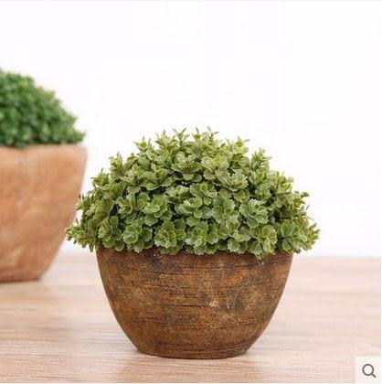 F0858 小清新綠色環保植物高仿真花套裝桌面擺設盆栽 萬年青3款選(1套)