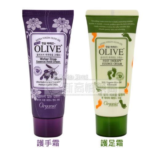 韓國White Cospharm OLIVE 橄欖保濕護手霜(紫)/護足霜(綠) 50g【新高橋藥妝】2款可選