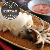 【下殺5折】肥厚大花枝(500g±10%/包)(2隻入)(食肉鮮生)