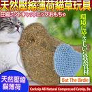 【培菓平價寵物網】美國CosmicCatnip宇宙貓 》100%全天然壓縮薄荷貓草玩具-麻雀兒