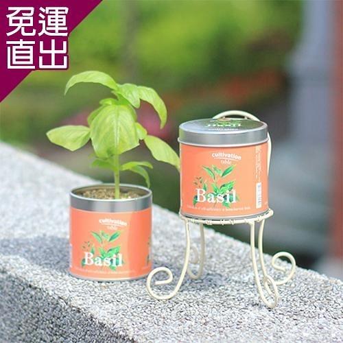 迎光 Cultivation Table栽培罐甜羅勒【免運直出】
