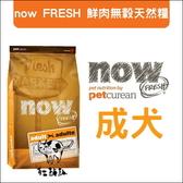 Now〔成犬配方,無穀犬糧,12磅〕  產地:加拿大