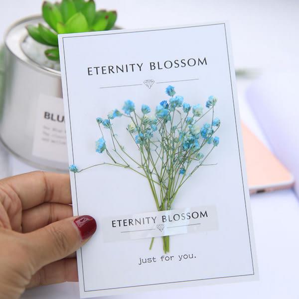 【BlueCat】鑽石永恆花滿天星乾燥花明信片 卡片