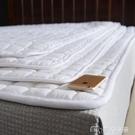 床墊酒店床墊軟墊薄款家用席夢思保護墊被褥出租房專用防滑墊鋪床褥子YYS 【快速出貨】