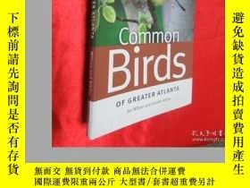 二手書博民逛書店Common罕見Birds of Greater Atlanta