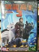 挖寶二手片-P01-359-正版DVD-動畫【馴龍高手3】-國英語發音(直購價)
