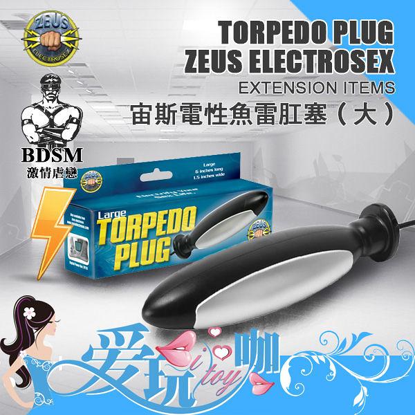【Large】美國 ZEUS ELETROSEX 宙斯電性魚雷肛塞 Electro Torpedo Plug- Large 電擊 低頻電流