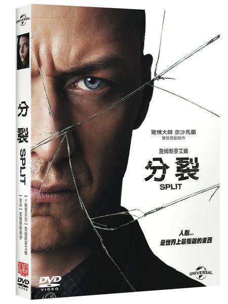 分裂 DVD SPLIT 免運 (購潮8)