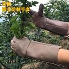 快速出貨牛皮防護防刺手套園林園藝修剪玫瑰月季摘花椒刺剝板栗子防滑