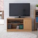 電視櫃 電視桌 收納【收納屋】職人加厚-單門二格電視櫃&DIY組合傢俱