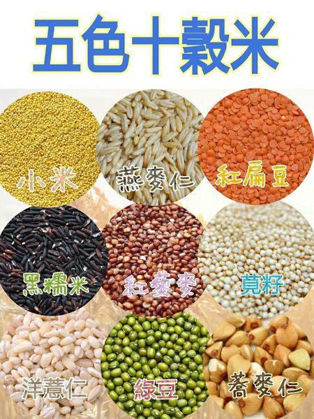五色藜麥十穀米/450g