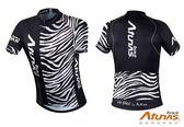 《Atunas Bike》歐都納 單車JE15021 RIDE 短袖車衣 Zebra M~L