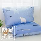 鴻宇 防蟎枕套2入 小白熊藍 防蟎抗菌 美國棉授權品牌 台灣製2008