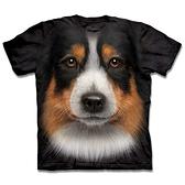 摩達客-(現貨)美國The Mountain 自然純棉系列 澳洲邊境牧羊犬臉 T恤